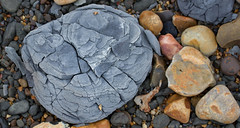 Mines Waste (CWhatPhotos) Tags: pictures camera blue sea macro beach broken june stone closeup canon that lens photography eos prime coast foto image artistic pics 28mm north picture pic pebbles images east have coastal photographs photograph fotos mines area 60mm waste which blast contain colliery dawdon blastbeach onthe fractured 2013 cwhatphotos