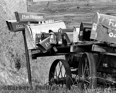 Waiting for Mail - Mailboxes Black and White (Barb Phillips) Tags: rural landscape outdoors blackwhite details country mailboxes idaho d90 barbphillips