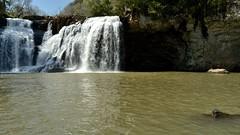 _DSC3384 (Papa Pic) Tags: musgo argentina waterfall arboles selva monte arroyo misiones cascada  sanvicente saltogolondrina
