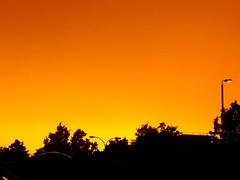 Sky (lcfcian1) Tags: light sunset red sky orange tree lamp rain silhouette yellow post dusk leicester lamppost