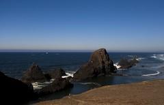 Oregon Coast (tenfeet_tall) Tags: oregon nikon ducks eugene ncaa collegefootball autzen wazzu d90