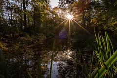 Moorlands in Autumn -7 (alh1) Tags: york england pond places naturereserve northyorkshire yorkshirewildlifetrust
