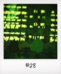 "#DailyPolaroid of 26-10-13 #28 • <a style=""font-size:0.8em;"" href=""http://www.flickr.com/photos/47939785@N05/10732631243/"" target=""_blank"">View on Flickr</a>"