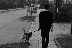 Walking with the Dog (cMonk3y) Tags: boy dog white man black guy out blackwhite cam emo hund mann schwarz junge weis schwarzweis uby outofcam