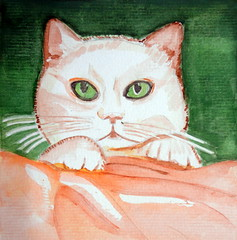 Cat, by Ademar (Dona Minúcia) Tags: cute art animal cat watercolor painting paper study gato fofo pintura aquarela gracinha