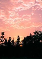 004Pink sky (yuntechphotoclub) Tags: 角落 攝影比賽 雲林科技大學攝影社 雲科23屆攝影社