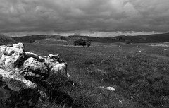 Dales Way, between Lea Green & Conistone Dib (kyliepics) Tags: olympus landscape e520 evolt520 olympuszuikodigital1122mmf2835 olympusviewer blackwhite addedtogroups