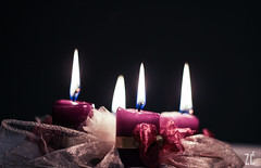 Advent (Zdravko.Curic) Tags: christmas advent 50f18 canon600d