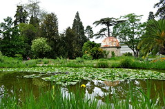 DSC_0517 (Mathilde Rozelot Ortuno) Tags: park flowers trees plants france reflection green nature water garden landscape spring pond lotus blossom montpellier greenery springtime waterscape