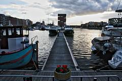Flower of the MAS (Jochem.Herremans) Tags: sunset haven flower water clouds docks mas belgium belgie ships antwerp antwerpen eilandje jachthaven