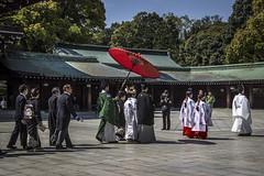 Japanese wedding (Cecilia A) Tags: japan meijijingu shrine tokyo japão casamento marriage umbrella canon600d explore canon canont3i ©ceciliaa