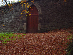 "Enclosed garden gate in Nov • <a style=""font-size:0.8em;"" href=""http://www.flickr.com/photos/134119275@N07/18672084309/"" target=""_blank"">View on Flickr</a>"