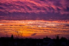 Sunrise (Herman1705) Tags: a500 ennamnchen lithagon 35mm bg40 sunrise