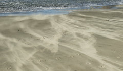 Blowing Sand, Santa Lucia Winds (marlin harms) Tags: blowingsand movingsand sand santaluciawinds