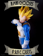 A Man chooses (theramencupgirl) Tags: bioshock anime manga japan vegeta dragonball dragon dragonballsuper prince game saiyan toyphotography toys figures soldier