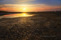 Sunrise aux prs sals (Gilles Bourdreux Photographie) Tags: france normandie mont saint michel sunrise sun soleil ciel sky mare reflets reflections campagne pr eau ngc patrimoine blending nikon