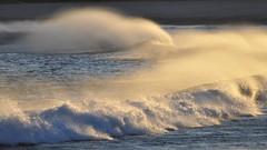 DSC_0230 Have you ever seen the wind? (Rodolfo Frino) Tags: nikonflickraward drop droplet droplets wind sand beach shore water ocean mar oceano windy windyday verywindy blowingbythewind breaking breakingwave seashore foam seafoam