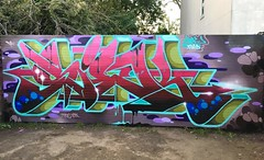 Fall action (SIEKONE.ID) Tags: siek flyid crew graffiti art pfe kts elw gak king me pa paradise graffitiart siekflyid