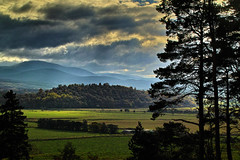 West Terrace Kingussie (Fr Paul Hackett) Tags: landscape kingussie mountain tree field clouds