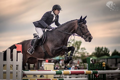 2803 ([]NEEL[]) Tags: horse concours hippique kharkiv ukraine white stable whitestable