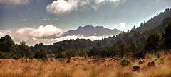 Vista desde el Cilcuayo (Pablo Leautaud.) Tags: suelodeconservacion mexico ciudaddemexico cdmx pleautaud naturaleza nature cilcuayo milpaalta