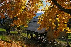Strugarje03 (Vid Pogacnik) Tags: austria karavanke karawanken mountains outdoor landscape hiking autumn foliage farm mountain alps