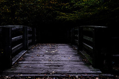Into the darkness... (tomk630) Tags: virginia light dark nature dawn bridge wildlife preserve usa travel sendak