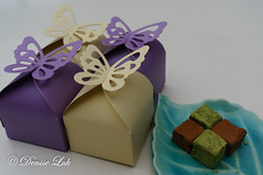 DSC02171-1 (cityowl1) Tags: chocolate food greentea matcha namachocolate pave