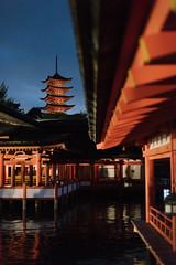 itsukishima shrine (ken_tsuda) Tags: hiroshima itsukushima jinja floatingshrine miyajima business trip justmadeit nikon d810 50mm f14 kentsuda evening shot architecture japan travel 20161025nikonhiroshimatrip6840 宮島 厳島神社 日本三景 広島 vsco
