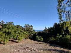 21,420 (joeginder) Tags: jrglongbeach hiking palosverdes canadapark