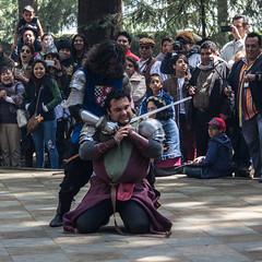 LRM_EXPORT_20161017_002957 (Omar Reina) Tags: medievo medieval caballo espadas caballeros danzantes bufon antorcha bailarinas arabes halcon acrobacias justas duelos batallas