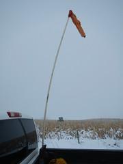 Defining borders... (Jeannette Greaves) Tags: 2016 snow fence corn cows hugh jeannette rlfarm deco