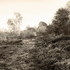 Lost in Nature (enneafive) Tags: borgloon oldwatermill rullingen olympus omd em5 pictorialism leonardmisonne sepia oldfashion nature