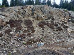 IMG_20160930_114741294_HDR (ctmarie3) Tags: banffnationalpark peytolake
