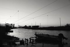 2016-11-10_09-26-42 (andrea.suzzi1985) Tags: ravenna italia italy emiliaromagna biancoenero blackandwhite magic fotografia foto pic dark river love reflaction fog bw canon canon1200d