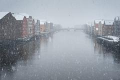 Snowy day (Helena Normark) Tags: snow snowfall itssnowing winter bryggene bakklandet trondheim srtrndelag norway norge sonyalpha7 a7 voigtlnder cv5015 nokton5015 nokton50mmf15