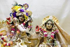 Janmashtami_250816_IMG_2859 (iskcon leicester) Tags: radhamadhava radha madhava srila prabhupada august 2016 janmashtami citycentre festival leicester drama music arts gopidots party birthday krishna hare rama maha mantra meditation bhaktiyoga bhakti