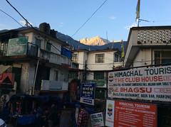 Mcleodganj_7294 (Manohar_Auroville) Tags: macleodganj mcleod ganj dharamshala tibet tibetan culture heritage himalaya himatyal pradesh india manohar luigi fedele dalailama forest mountain village
