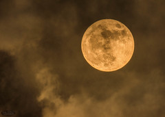 Super Luna con nubes (PictureJem) Tags: nubes nocturna cielo luna