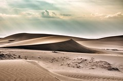 Nam Cng sand hill, Phan Rang, Ninh Thuan, Viet Nam Sand Dune Desert Sand Physical Geography Heat - Temperature Nature Arid Climate Landscape Beauty In Nature Scenics Outdoors No People Sky Day Vietnam Trip Phan Rang, Ninh Thuan Travel On The Way Alone (minhquanfoto) Tags: sanddune desert sand physicalgeography heattemperature nature aridclimate landscape beautyinnature scenics outdoors nopeople sky day vietnamtrip phanrang ninhthuan travel ontheway alone