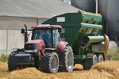 Case IH Puma 225 CVX Tractor with a Richard Weston FR16 Chaser Bin (Shane Casey CK25) Tags: case ih puma 225 cvx tractor richard weston fr16 chaser bin killavullen county cork winter barley grain harvest grain2016 grain16 harvest2016 harvest16 corn2016 corn crop tillage crops cereal cereals golden straw dust chaff ireland irish farm farmer farming agri agriculture contractor field ground soil earth work working horse power horsepower hp pull pulling cut cutting knife blade blades machine machinery collect collecting nikon d7100 traktori tracteur traktor trekker cignik cnh casenewholland red