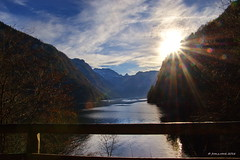 Knigssee Sunrise (franz_rank) Tags: gewsser see berge landschaft alpen berchtesgaden berchtesgadenerlandbayern knigssee