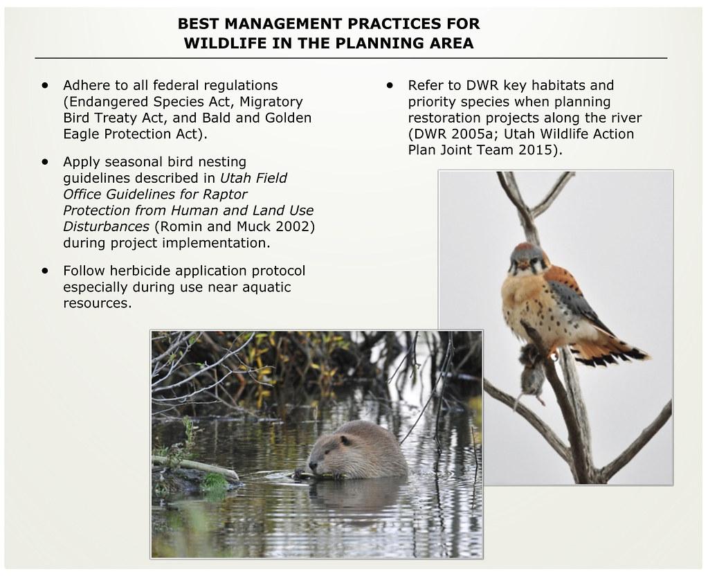 Jordan River Comprehensive Management Plan on