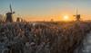 Kinderdijk Below Zero (Inky-NL) Tags: kinderdijk nikond750 vorst winter ijs molens natuur zonsopgang zonsopkomst ingridsiemons©2016 frost sunrise earlymorning nederland netherlands windmills landscape landschap belowzero fx nikonfx tamronsp2470mmf28divcusd nature sun