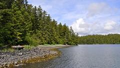 Bear Island, Alaska (Pejasar) Tags: island bearisland alaska trees beach rock water