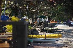 santo antônio de lisboa (zsïts) Tags: barcos praia florianopolis santoantoniodelisboa