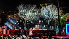 2016.12.01 Christmas Tree Lighting Ceremony, White House, Washington, DC USA 09324