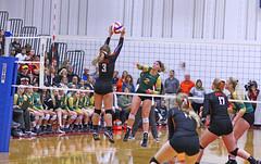 IMG_6896 (SJH Foto) Tags: girls volleyball high school allentown central catholic somerset team teen teenager net battle spike block action shot jump midair burst mode