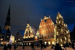 Ratslaukums (IVAN 63) Tags: riga latvia lettonia vecriga christmastree view neve natale panorama panoramiche vista paesaggio natalizio nevivatabianco snow winter