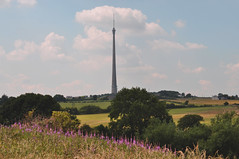 from Emley Village to Emley Moor (littlestschnauzer) Tags: uk flowers blue wild summer england sky west green tower rural standing landscape concrete countryside high scenery skies view purple yorkshire scenic july free landmark aerial farmland structure fields farms tall mast build moor signal pennine coulds huddersfield transmitter emley 2013 elementsorganizer11